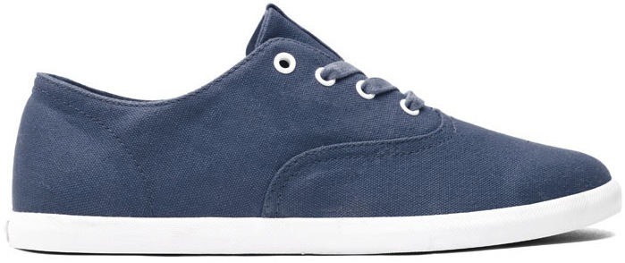 Navy Canvas Vegan Skateboard Shoe