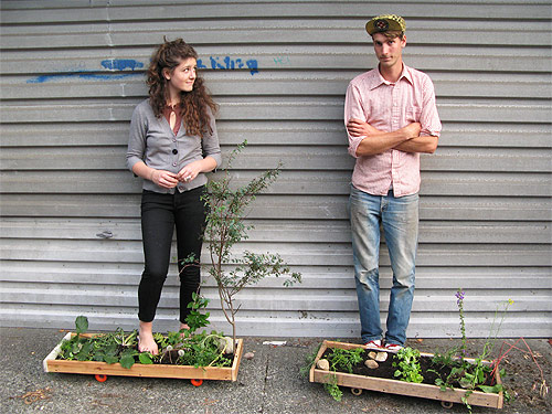 garden-boards