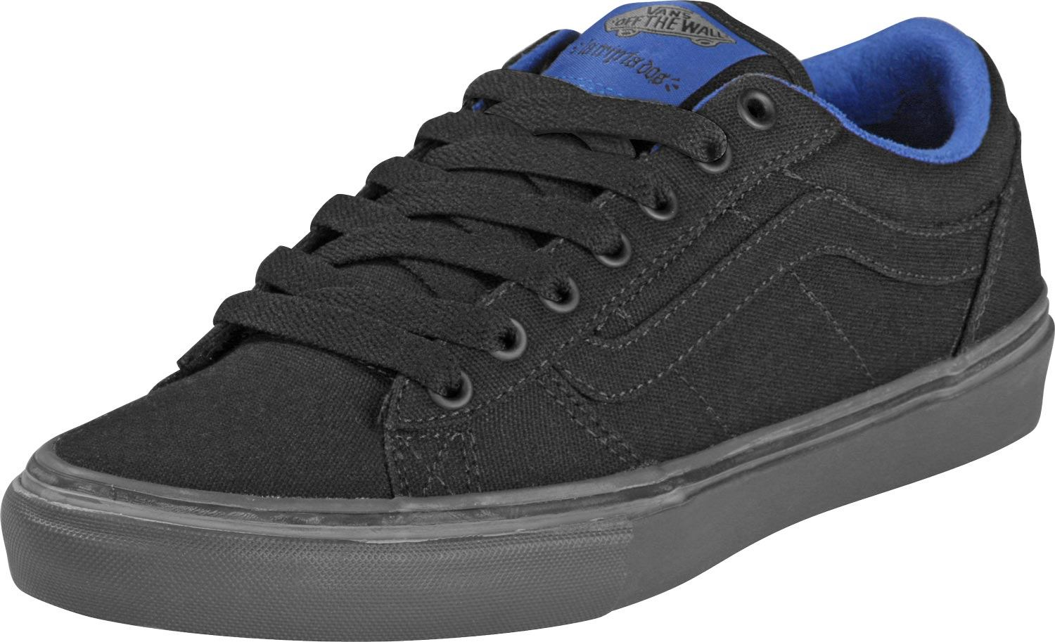 Vegan Vans skateboard shoes
